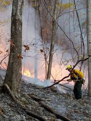 A firefighter fighting fire.