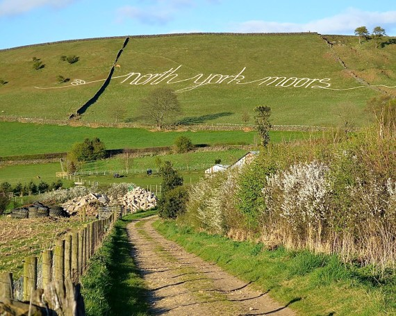 North York Moors National Park Authority – TDY 2015
