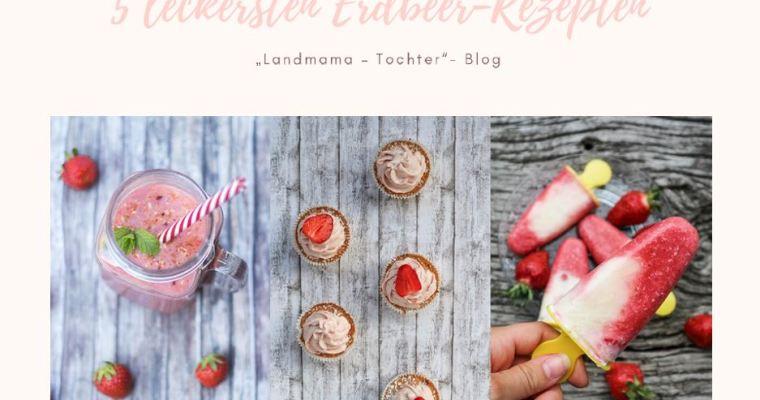Unseren 5 leckersten Erdbeer-Rezepten – Dein E-Book