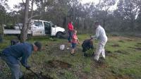people planting at Brickwood Reserve