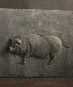 Betonnen paneeltje Hangbuikzwijn