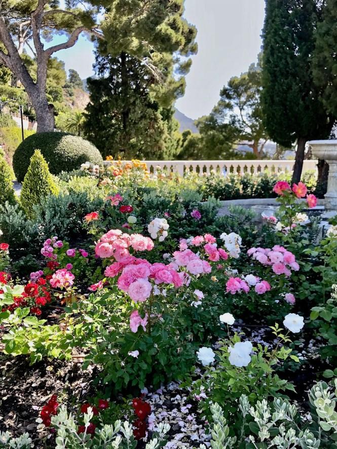 Cap Estel Rose Garden