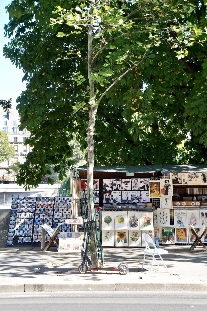 sunday in paris bouquiniste