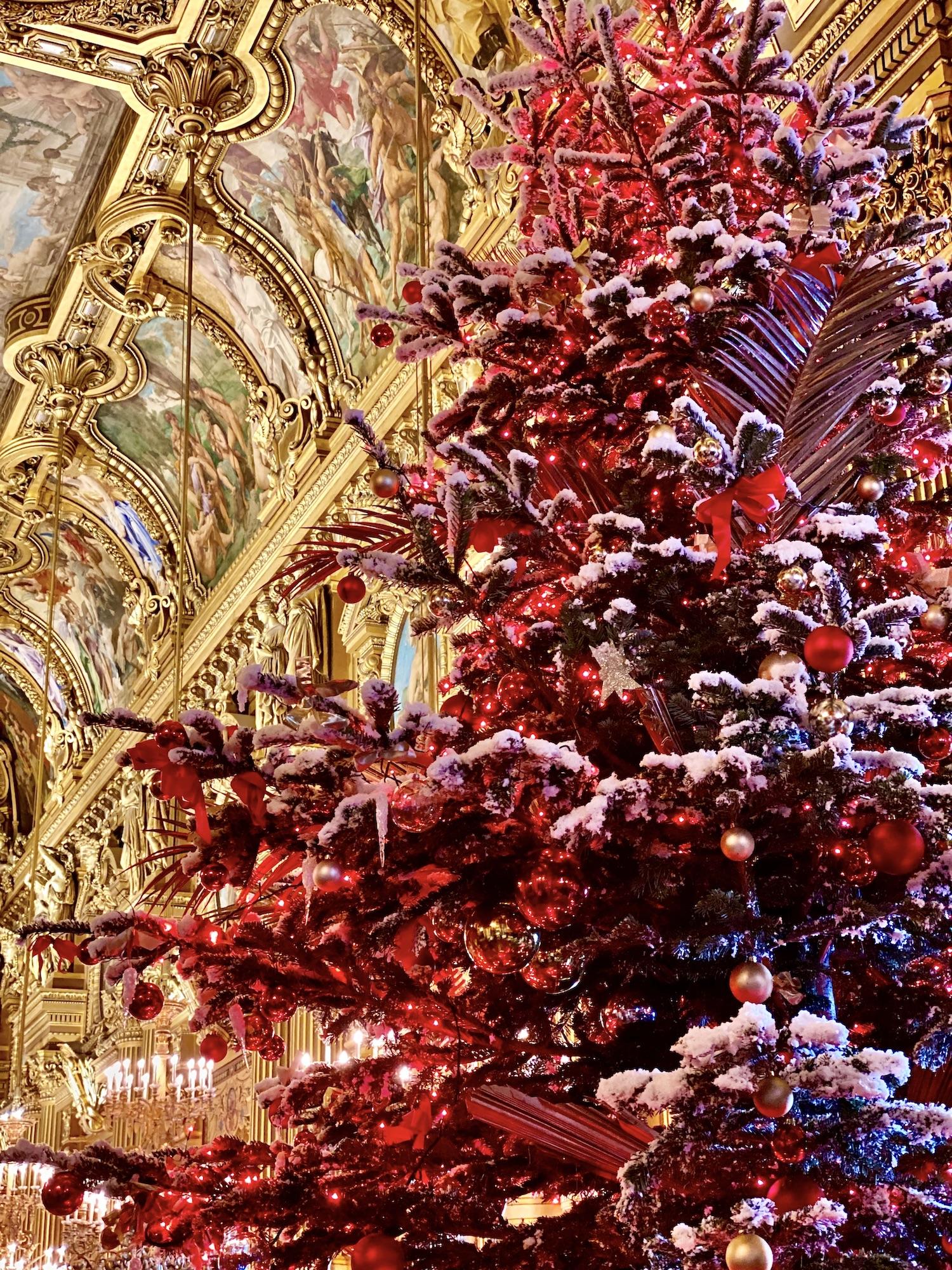 Christmas Tree Palais Garnier