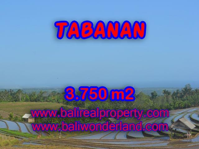 Land for sale in Tabanan Bali, Great view in TABANAN – TJTB074