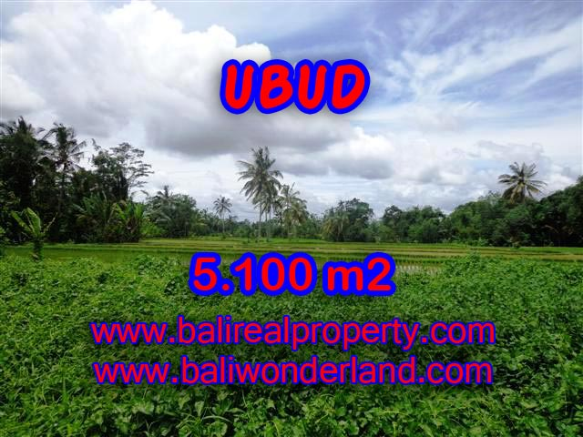 Land for sale in Ubud Bali, Wonderful view in Ubud Tegalalang – TJUB368