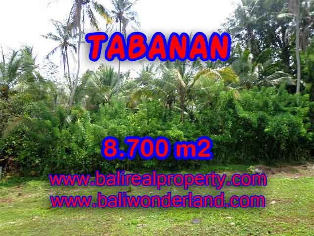 Land for sale in Bali, exotic view in Tabanan Selemadeg Bali – TJTB115