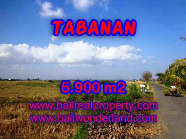 Wonderful Property in Bali for sale, land in Tabanan Bali for sale – TJTB131