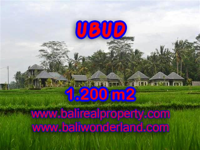 Land in Ubud Bali for sale, Outstanding view in Central Ubud – TJUB365