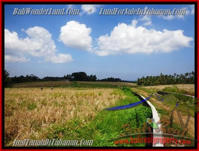 Property in Bali for sale, Astonishing land for sale in Tabanan Bali – TJTB136