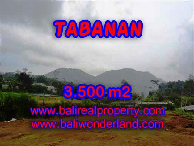 Land in Tabanan for sale, Stunning view in Tabanan Bedugul Bali – TJTB102