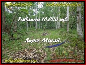Affordable Tabanan Penebel BALI LAND FOR SALE TJTB177