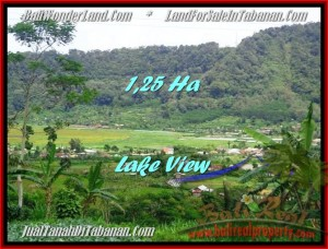 FOR SALE Beautiful PROPERTY LAND IN TABANAN TJTB188