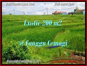 Exotic PROPERTY Canggu Cemagi BALI LAND FOR SALE TJCG170