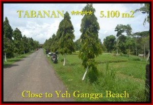 Magnificent PROPERTY 5.100 m2 LAND IN Tabanan yeh Gangga FOR SALE TJTB186