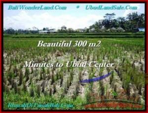 FOR SALE Affordable 300 m2 LAND IN UBUD TJUB500