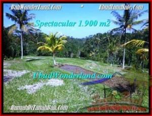 Beautiful UBUD BALI 1,900 m2 LAND FOR SALE TJUB505
