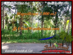 Affordable PROPERTY 2,000 m2 LAND SALE IN UBUD BALI TJUB506