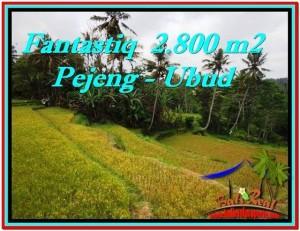 Magnificent UBUD BALI 2,800 m2 LAND FOR SALE TJUB521