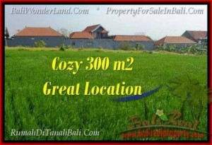 300 m2 LAND SALE IN Canggu Brawa BALI TJCG186