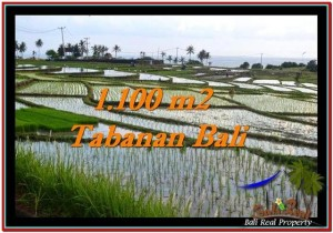 FOR SALE Magnificent LAND IN Tabanan Selemadeg BALI TJTB248