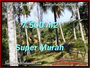 Magnificent PROPERTY Tabanan Selemadeg 7,500 m2 LAND FOR SALE TJTB207