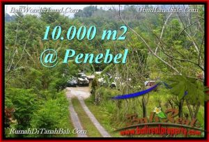 Exotic PROPERTY  TABANAN Jatiluwih 10,000 m2 LAND FOR SALE TJTB214