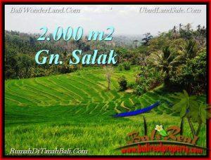 Beautiful TABANAN LAND FOR SALE TJTB220