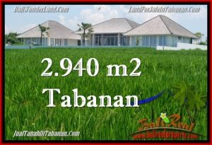 Magnificent PROPERTY 2,940 m2 LAND FOR SALE IN Tabanan Selemadeg TJTB265