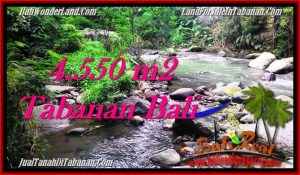 Magnificent PROPERTY LAND IN TABANAN FOR SALE TJTB284