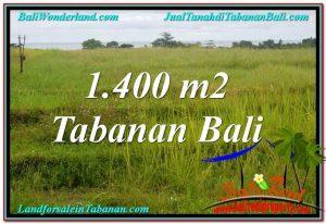 Beautiful LAND FOR SALE IN Tabanan Selemadeg BALI TJTB309