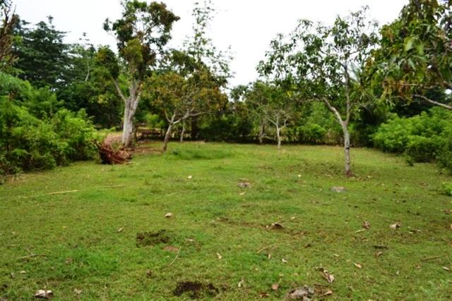 Land for sale in Jimbaran Close to Pecatu Graha  in Jimbaran  Bali