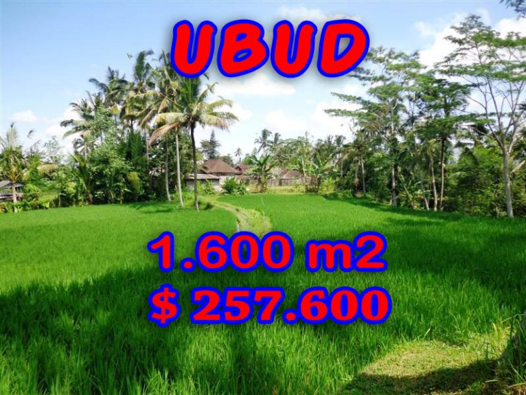 Land in Ubud Bali For sale 16 Ares in Ubud Tegalalang