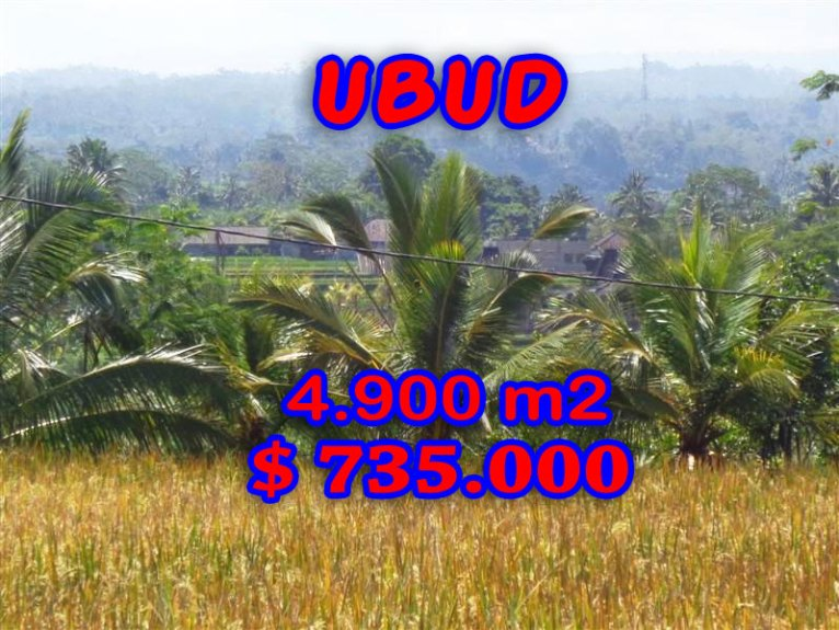 Affordable Land for sale in Ubud Bali 4.900 m2 Stunning rice fields and mountain view