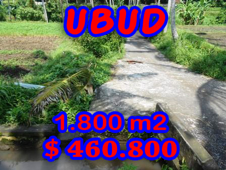Land for sale in Ubud Bali 1,800 m2 in Ubud Center