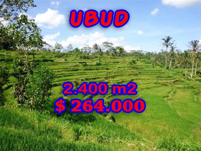 Land in Ubud Bali For sale 24 Ares with Rice Fields