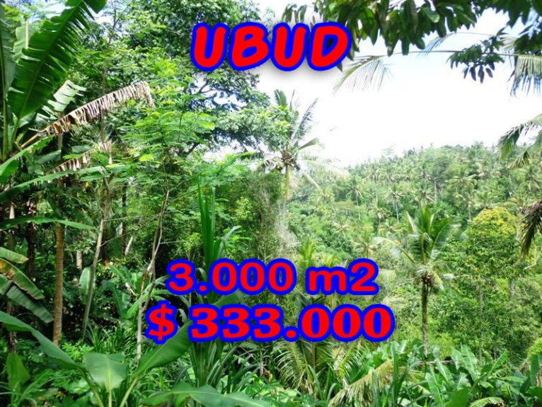Ubud Land for sale By the roadside in Ubud Tegalalang Bali