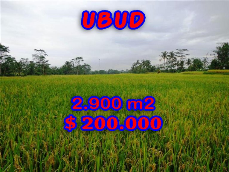 Magnificent Property for sale in Bali, land for sale in Ubud Bali  – TJUB244