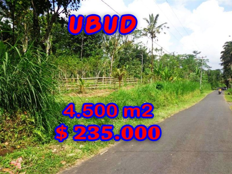 Amazing Property in Bali, Land for sale in Ubud Bali – TJUB237
