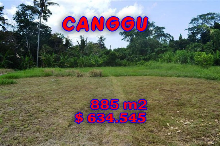 Land for sale in Bali, Fantastic view in Canggu Bali – TJCG103