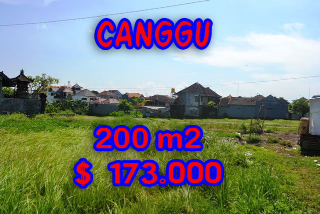 MagnificentLand for sale in Bali, Amazing Rice fields view in canggu brawa – TJCG109