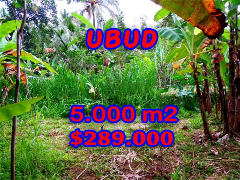Land in Bali for sale, extraordinary view in Ubud Tegalalang  – TJUB256