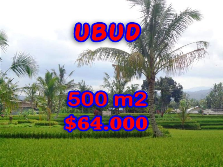 Land in Bali for sale, fantastic view in Ubud Bali – TJUB257