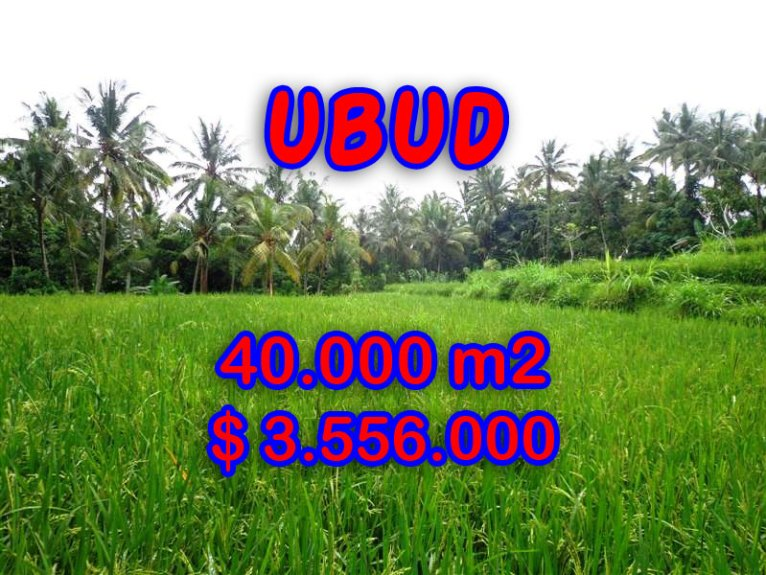 Land for sale in Bali, amazing view in Ubud Tampak siring – TJUB269