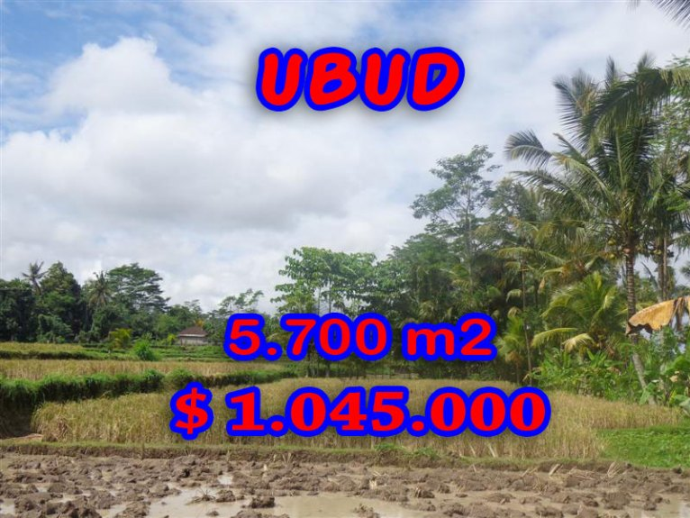 Land for sale in Bali, fabulous view in Ubud Pejeng – TJUB279