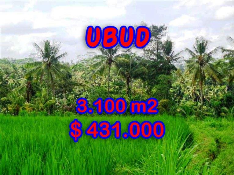 BeautifulLand for sale in Bali, rice fields view in Ubud Bali – TJUB268
