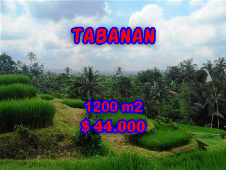 Land in Bali for sale, Stunning view in Tabanan Bali – TJTB053