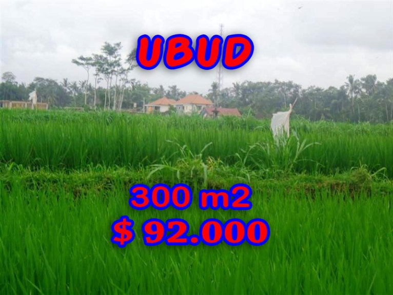 Land in Bali for sale, incredible view in Ubud Center Bali – TJUB282