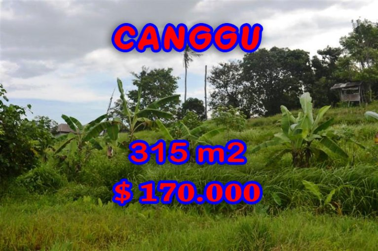 Land for sale in Bali, Exotic view in Canggu Bali – TJCG112