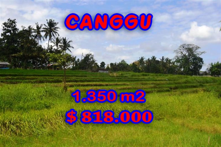 Land in Bali for sale, Spectacular view in Canggu Bali – TJCG114